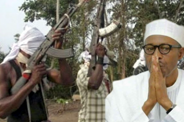 Niger Delta Avengers: President Buhari Reads riot Act …considers the carrot and stick option