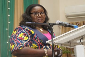 House of Reps in disarray over N260bn NDDC budget