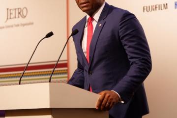 Elumelu urges Japan to deepen partnership with Africa