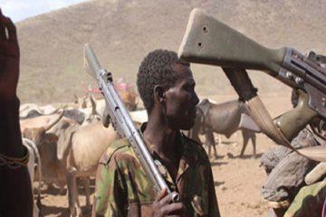 SOKAPU raises alarm as Fulani Herdsmen unleash mayhem, kill 33, burnt 215 houses, displace 108 communities